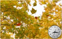 Golden Leaves 3D 1.2.0 Screensaver
