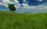 Grassland 3D Screensaver 1.0.0.1